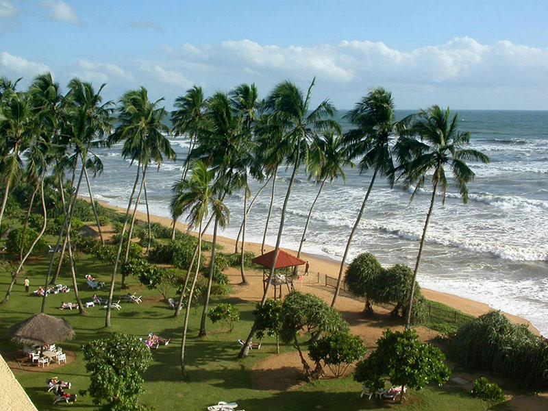 Где и чем заняться на Шри-Ланке?