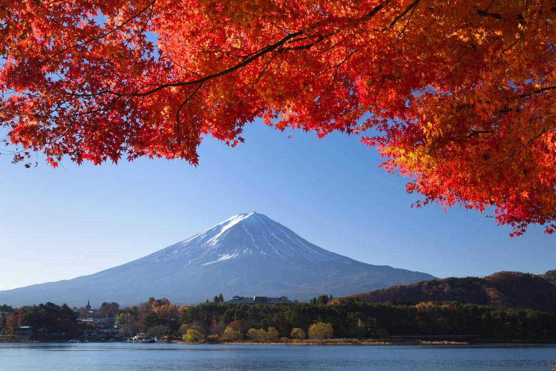 Япония упростила визовые требования для граждан Украины