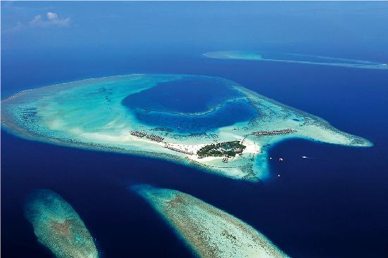 Мальдивы стали обладателем престижной награды World Travel Awards: Лучшее место на планете для дайвинга