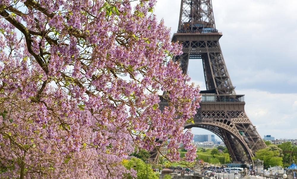 В каких городах лучше всего встречать весну